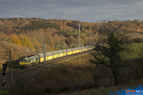 V266 RTB Cargo . Z 42591 . Gemmenich. 23.11.18.
