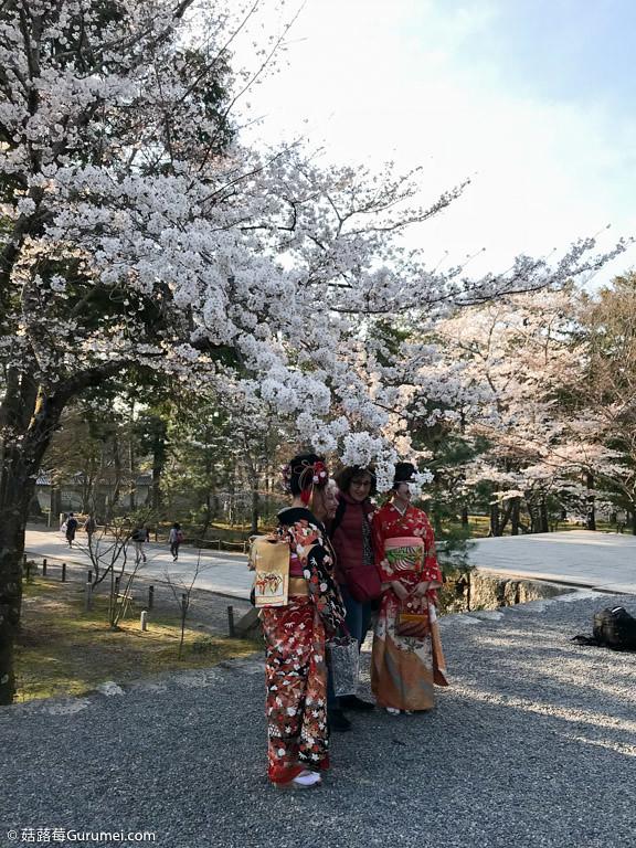 打工度假-京都生活-賞花、野餐-074