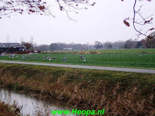 2018-11-28   Vaassen 25 km  (113)