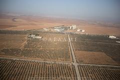 Jordanische Universität für Wissenschaft und Technologie