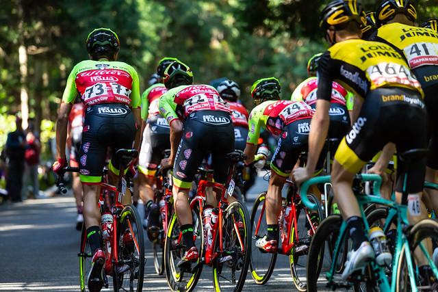 ジャパンカップサイクルロードレース2