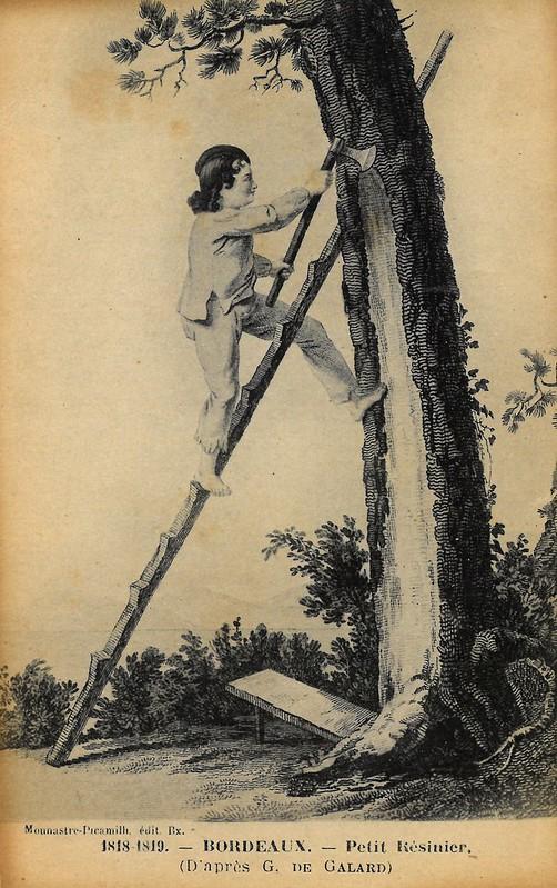 """D'après Gustave de Galard """"Petit résinier"""" 1818-1819"""