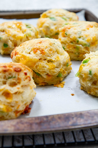 Cheddar-Scallion Biscuits -- Easy homemade biscuits filled with layers of melty cheese and sliced scallions. @girlversusdough #girlversusdough #scallions #cheddar #biscuitrecipe | by girlversusdough