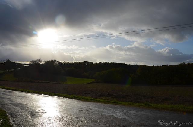 Eblouissement après la pluie