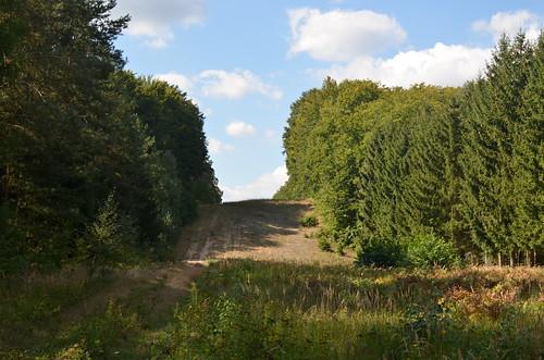 Wanderung von Chorin nach Niederfinow   by tm-md