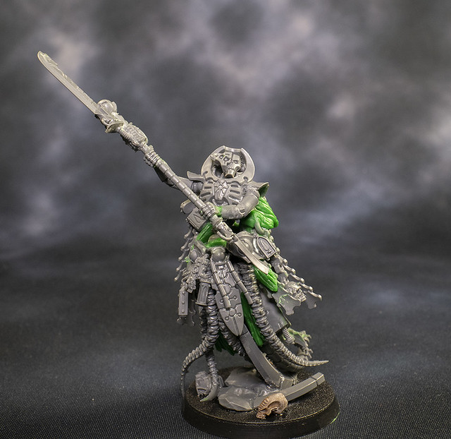 The Collector Necron Overlord