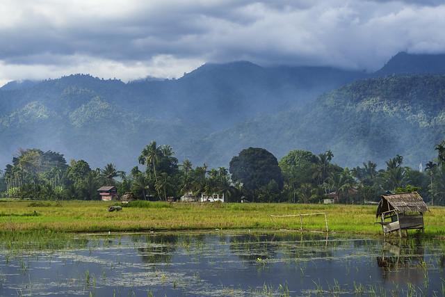 Banda Aceh. First impressions=AMAZING