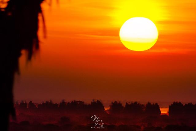 ::: Red Sunset :::