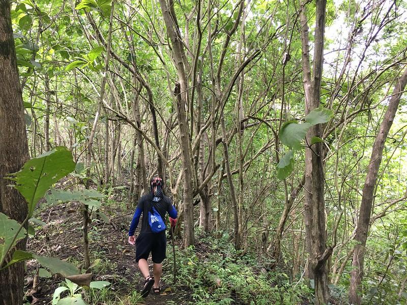 The Spartan Trail