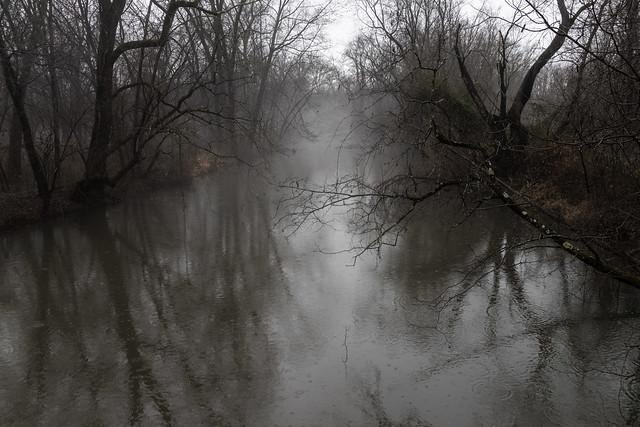 Rainy, Misty Day