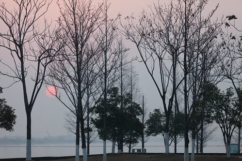 yixing wuxi jiangsu china prc sunrise dawn softlight orange pink sun trees