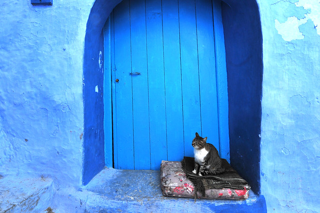 Chefchaouen, Morocco, January 2019 D700 374