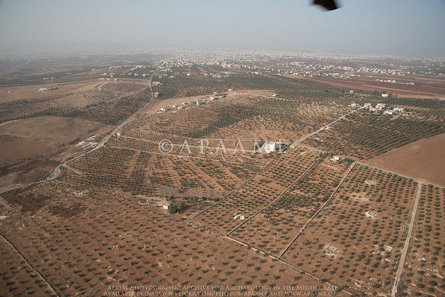 Irbid area; orchards and infrastructure development