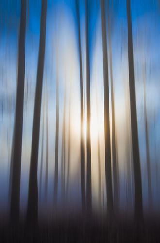 Blurred Fall | by Bernie Kasper (5 million views)