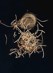 cosmic noodles