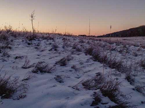 marineonsaintcroix marineonstcroix minnesota williamobrienstatepark field morning snow statepark sunrise winter unitedstates us