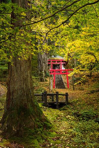 三戸郡 青森県 日本 jp aomori japan hokoji temple sony e sonnar3528za autumn
