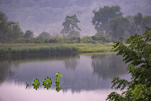 dragon water fog sunset river vermont mystical