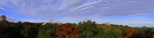 landscape autumn hillside centraltexas hillcountry panorama treeline horizon foliage