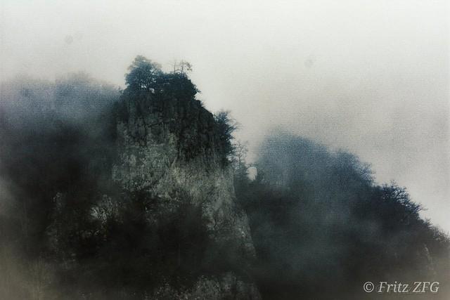 Fog in the Danube valley