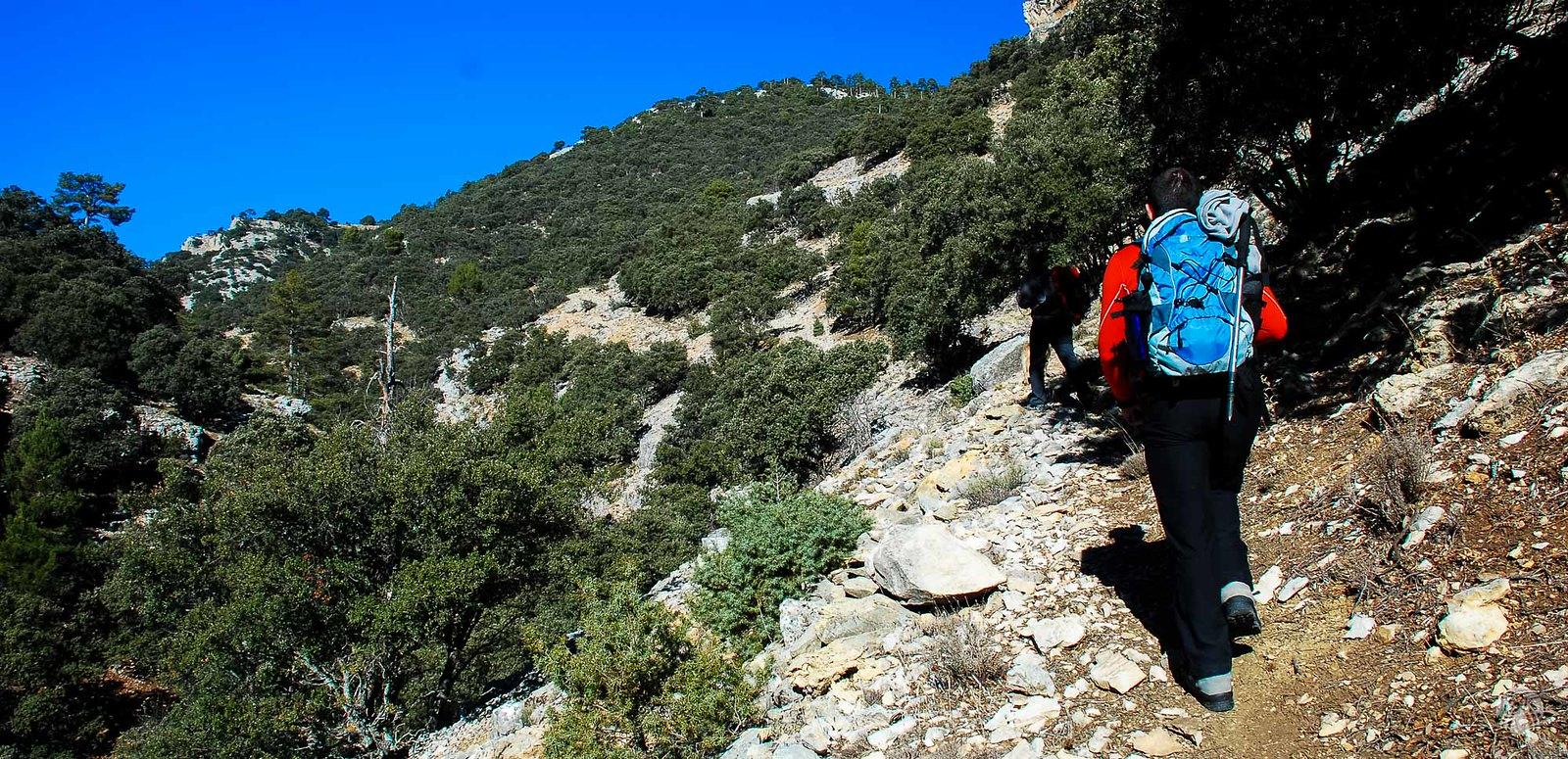 La senda va ganando altura por la margen izquierda del barranco