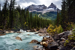 Looking Downstream with the Yoho River with Cathedral Crags and Other Peaks of the Bow Range (Yoho National Park) | by thor_mark 