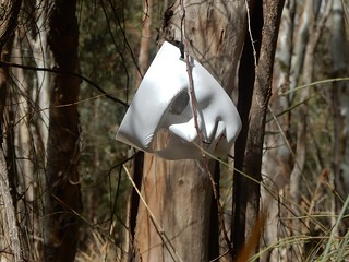 Mask in the Bush | by mikecogh