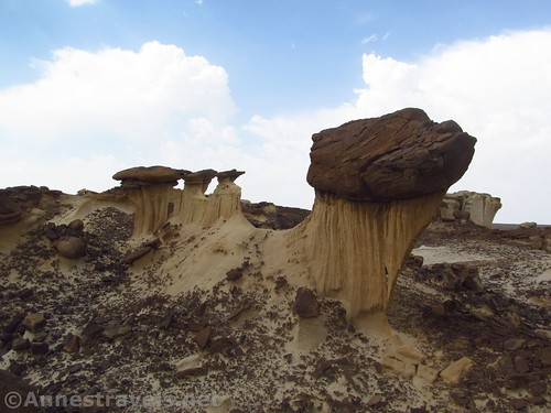 Rock formations in the Valley of Dreams, Ah-Shi-Sle-Pah Wilderness, New Mexico