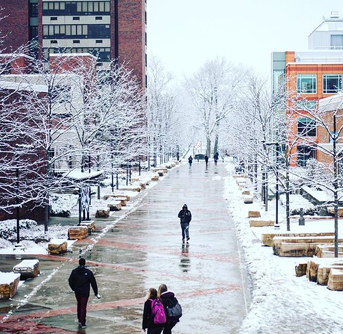 Please be safe traveling back to campus this weekend! There is a WINTER STORM WARNING in effect from 4pm on Saturday to 4pm on Sunday. #npsocial #newpaltz #sunynewpaltz #hudsonvalley