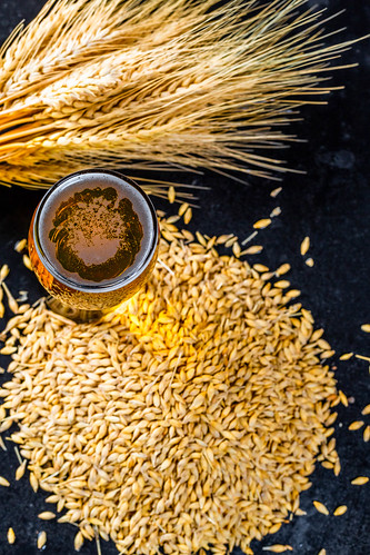 A glass of fresh beer with spikelets and barley grain | by wuestenigel