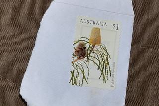 Banksia speciosa [Australian $1 stamp]