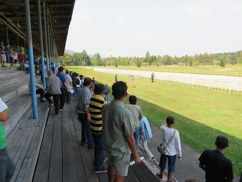 チェンマイ競馬場のレース観戦