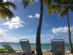 From my latest trip to the Caribbean Islands