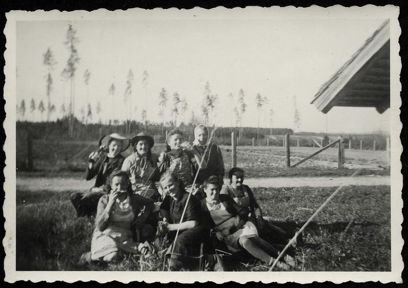 Archiv R879 In einer Großgärtnerei, Villingen, 1950er