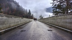 Walking over Salginatobel Bridge