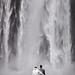 Annaliese & Tom by LalliSig