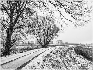 Winter | by Ingmar Vermolen