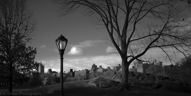 View of the UWS from Inside Central Park Near 100th St.