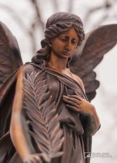 Cemetery Angel  6