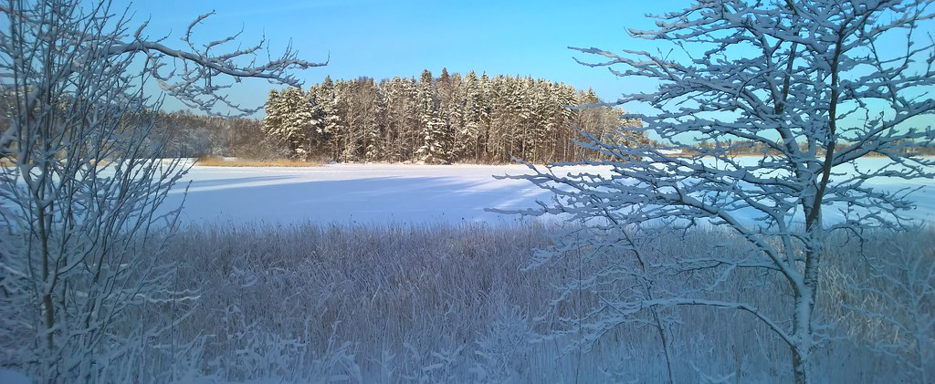 Frosty winter day, Lake Pitkäjärvi
