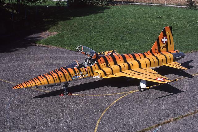 Swiss AF - F-5E - J-3003 [Dübendorf summer 2003] Tiger cs