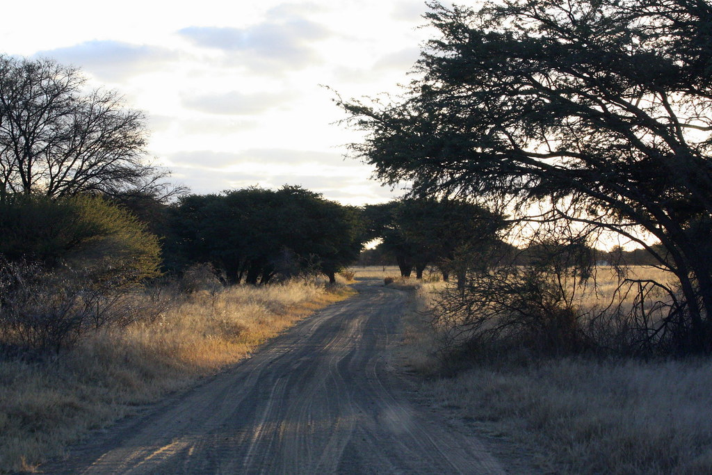 Free State: Sandveld Game Reserve