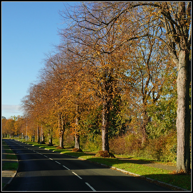 Badby Road West, Daventry