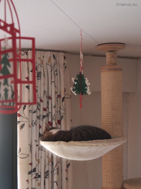 Under the Christmas tree ornamant - Happy Caturday