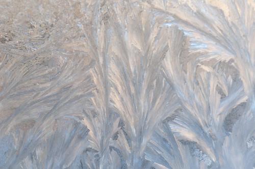 perturbedsanctum ice winter snowpocalypse