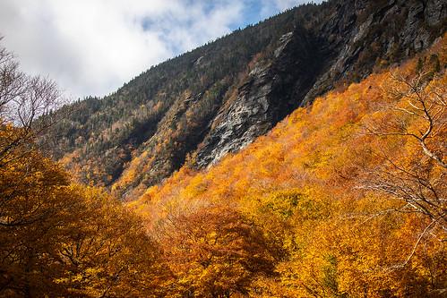 ©shabdrophoto fallfoliage leafpeeping stowe vermont