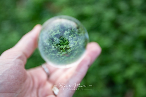 Lucky Lensball | by niseag03