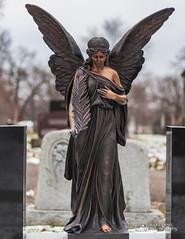 Cemetery Angel 4