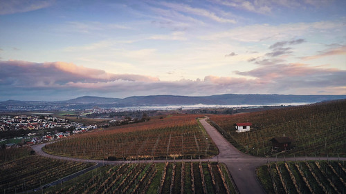 landscape view vineyards hill sky clouds morning sunrise light colors details mood outdoors early travel visit explore discover stetten kernen remstal remsmurrkreis badenwürttemberg germany europe photography hobby aerial drone djimavic2pro fall autumn season december winter fog foggy