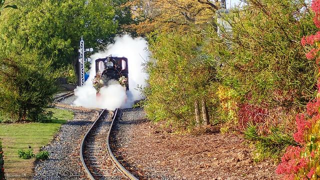 Train Fleuri - 6160